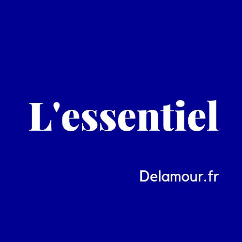 """Featured image for """"De l'amour : ce que l'islam a d'essentiel à dire"""""""